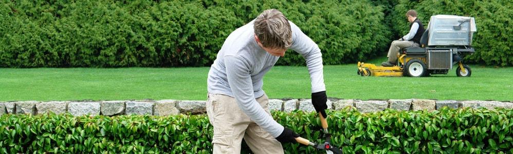 Aide et service jardinage domicile