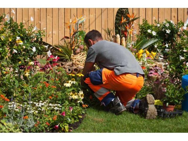 Jardinier expérimenté à votre service