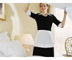 Ménage, repassage, accompagnement personnes âgées et garde d'enfants - Moulins (03000)