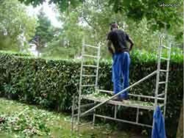 Enrtretien extérieur/jardinage