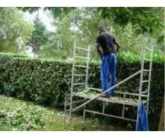 Enrtretien extérieur/jardinage à Châteauroux (36000)