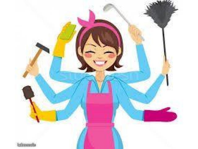 Ménage/repassage/aide à la personne