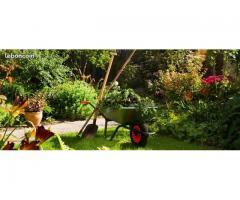 Jardinier avec 10 ans d'expériences à Soissons (02200)