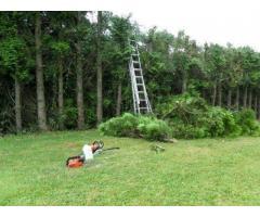 Jardinier pour entretien, nettoyage et création à Armentières (59280)