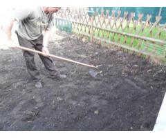 Jardinier pour entretien, nettoyage et création