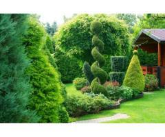 Jardinier pour travaux d'entretien - Mondouzil (31850)