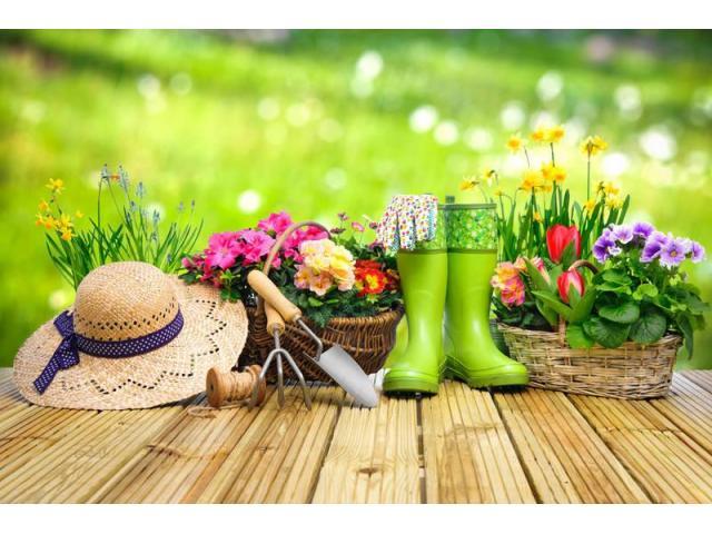 Jardinier-Paysagiste | Entretien et création de jardin