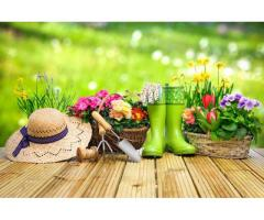 Jardinier-Paysagiste | Entretien et création de jardin à Rezé (44400)