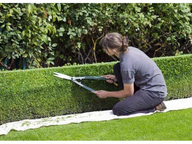 Jardinier paysagiste passionné