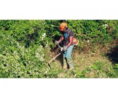 Travaux de tonte débroussaille plantes piquet bois à Capestang (34310)