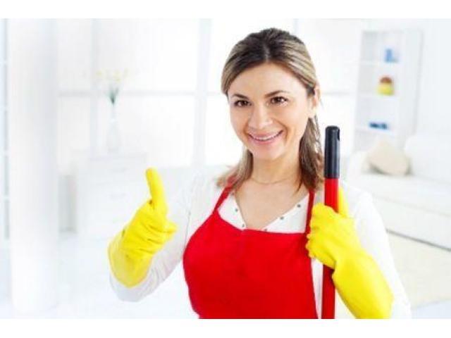 Femme de ménage dynamique