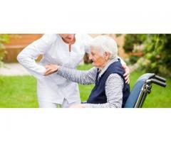 Emploi aide pour handicapé à domicile - Mertzwiller (67580)