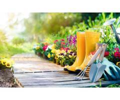 Jardinier sérieux à votre service à Metz (57050)