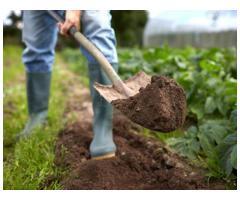 Jardinier à votre service - Metz (57)
