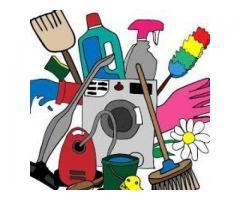 Homme cherche des travaux ménagers - Merville (31330)