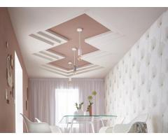 Rénovation, réparation de plafonds, cloisons... - Paris (75011)
