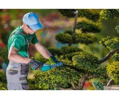 Jeune jardinier pour votre espace vert - Metz (57)