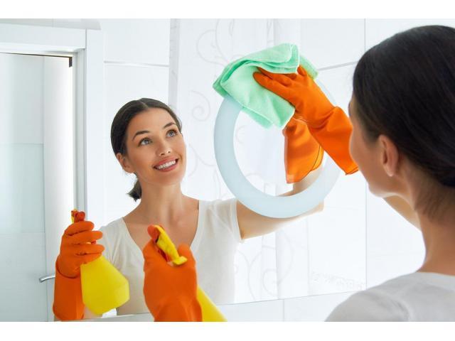 Aide ménagère recherchée