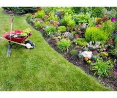 Jardinier paysagiste pro à Lorient (56100)