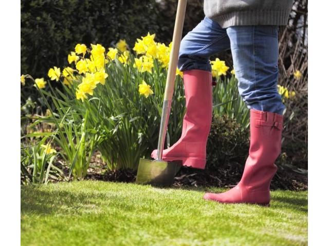 Jardinier sérieux et équipé chez vous
