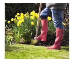 Jardinier sérieux et équipé chez vous à Metz (57)