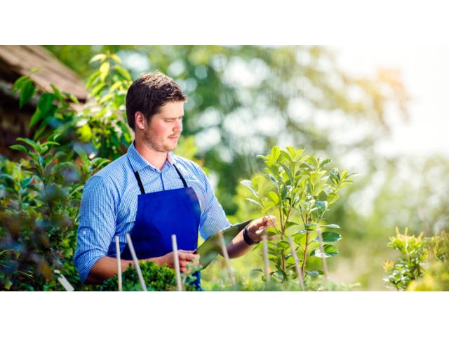 Jardinier outillé chez vous