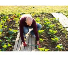 Bricolage et jardinage - Ancy-sur-Moselle (57130)