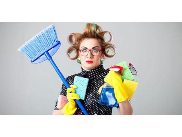 Femme de ménage compétente et efficace