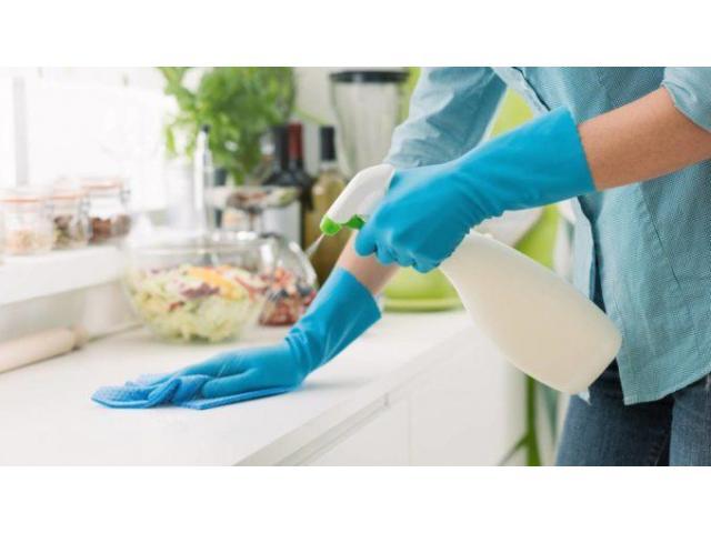 Recherche aide ménagère et garde d'enfants pour Juillet et Aout