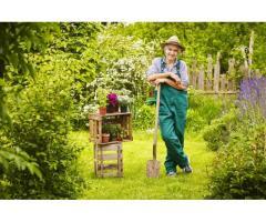 Homme toute main pour entretien espaces verts à Metz (57)