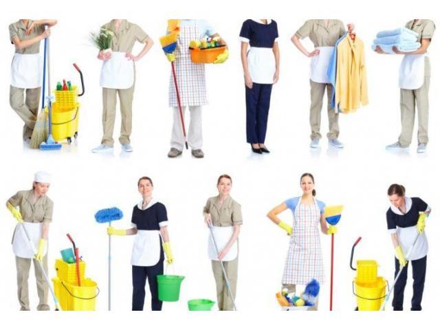 Aide ménagère sérieuse