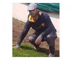 jardinier expérimenté