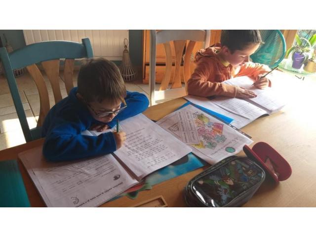 Recherche Aide aux devoirs niveau 5ème