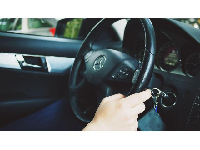 Chauffeur/livreur polyvalent