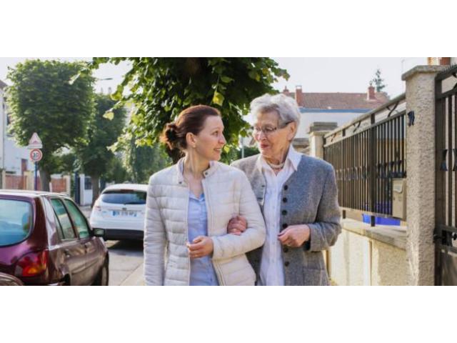 Aide / auxiliaire à domicile